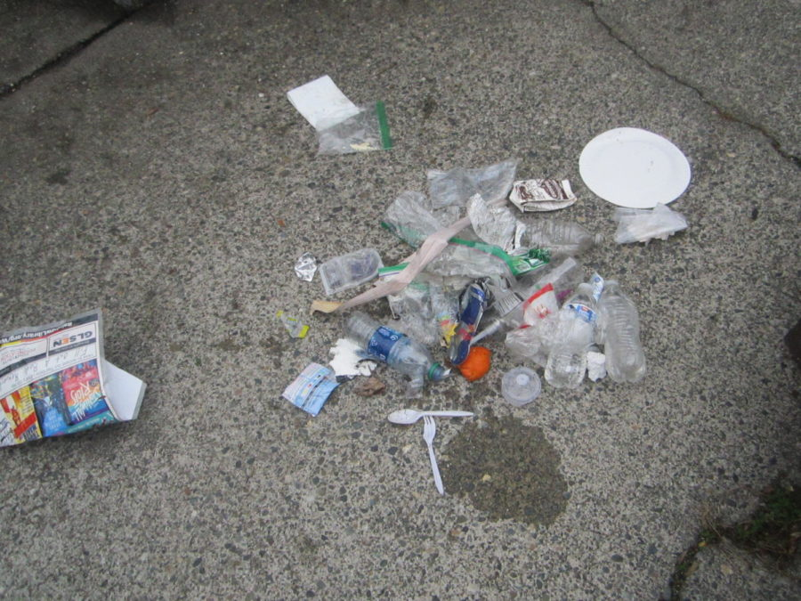 Dont+Be+a+Quitter%2C+Clean+Up+Litter%21